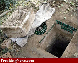 Baghdad Starbucks
