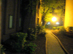 walk home, walkway