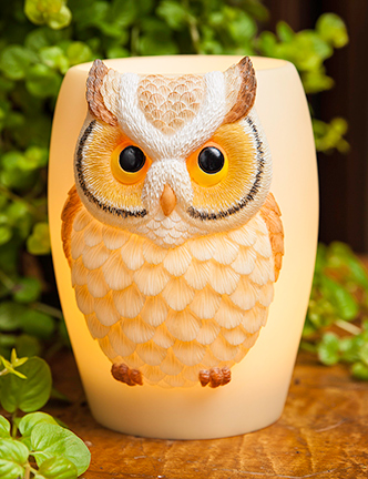Hoot Owl Night Lamp