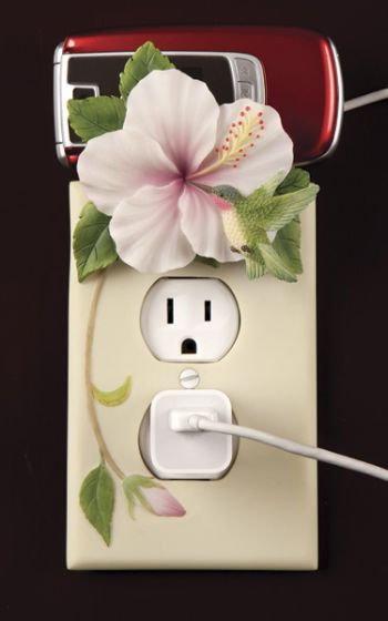 hummingbird and hibiscus outlet cover and cell phone