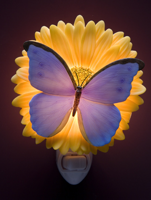 Blue Butterfly on a Gerber Daisy Night Light