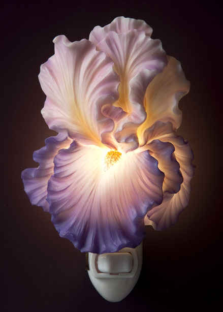 Purple Bearded Iris Night Light