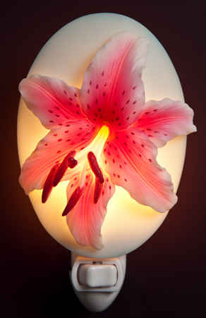 Star Gazer Lily Night Light