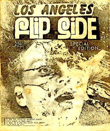 Flipside #3