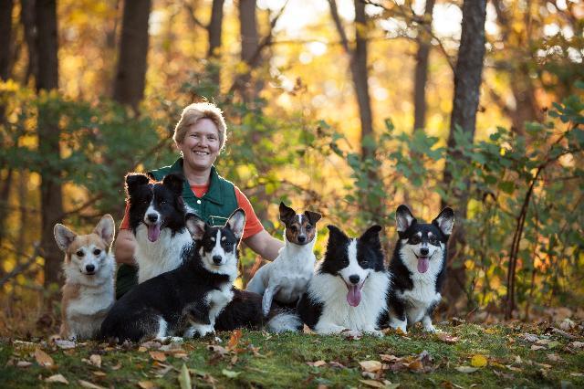 Joyful Canine Training