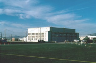 B-17 hangar 1990