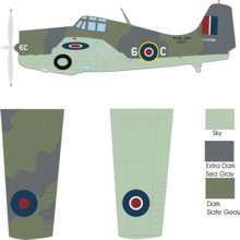 Grumman Wildcat V color scheme and markings