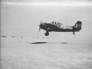 Grumman Martlet II of the FAA in North