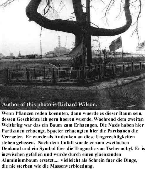 Hinrichtungsbaum