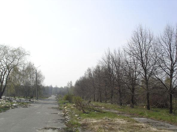 """""""Spring2008"""""""