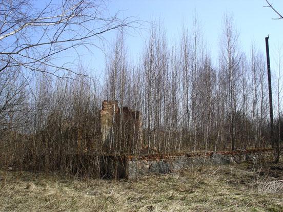�spring2007�