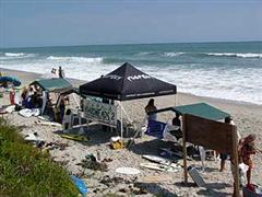 Charity Skim and Surf Fest