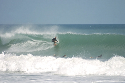 Local Surfer - Matt Kechele - Click pic for more