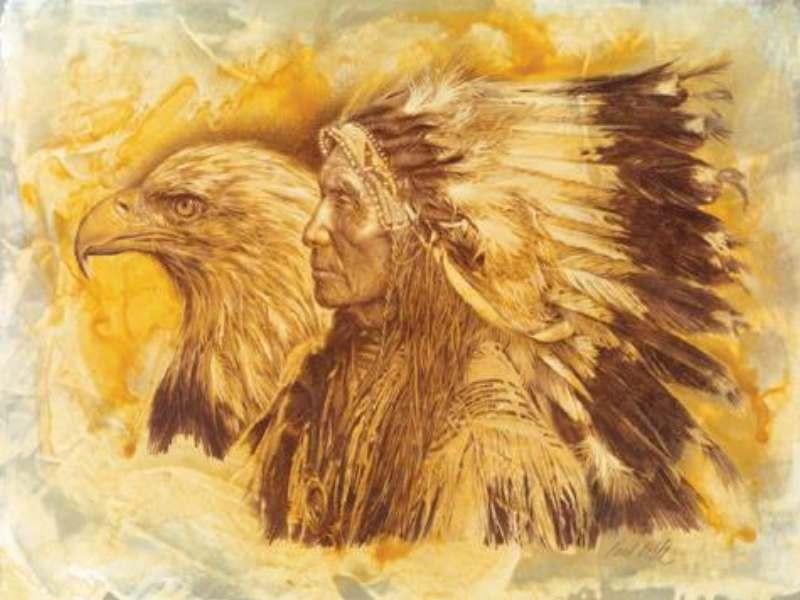 Native American Wallpaper 3White Eagle Wallpaper