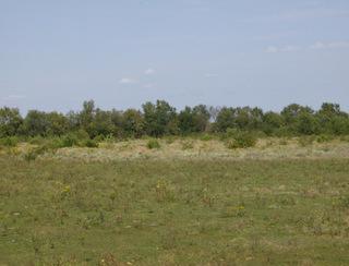 Future site of Squadron Field