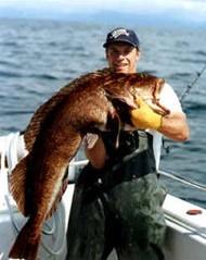 AlaskaSmokedFish.com Lingcod Photo
