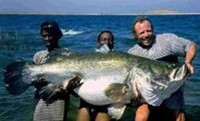 Click on the Nile Perch for freshwater hot spots