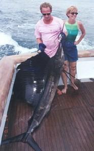 Pinas Bay Panama, Eat Me Tackle Sailfish Photo