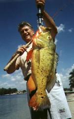 Captain Jim Anson's Record Peacock Bass