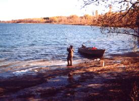 World class carp fishing on the st lawrence river for St lawrence river fishing