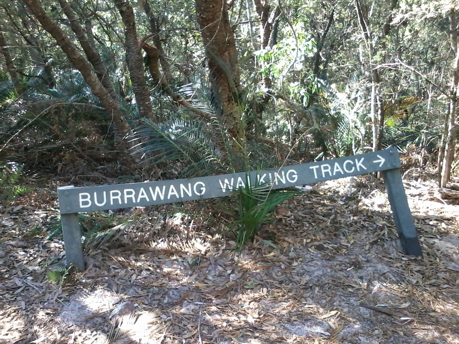 Wyrrabalong National Park