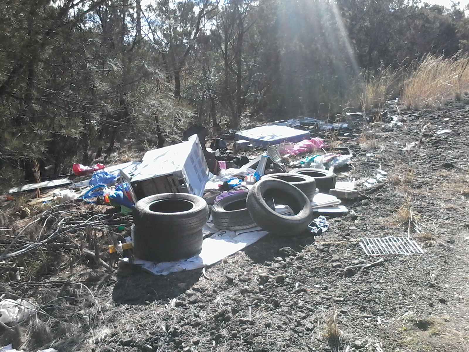 Rubbish dumped in the bush, on the old Pacific Highway, at San Remo.