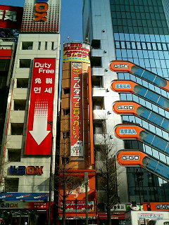 The thin Lammtara building squeezed in between the Sega and LAOX outlets on Chuo Dori, and home to the Maid Cafe Lamm and plenty of anime porn