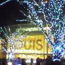 Roppongi Hills Illumination and Christmas decorations Xmas 2005