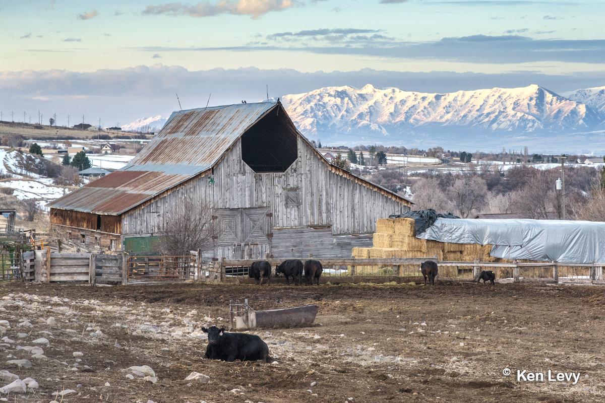 Heptagonal Loft Barn