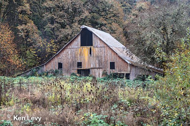 Barn, Salt Creek, Oregon