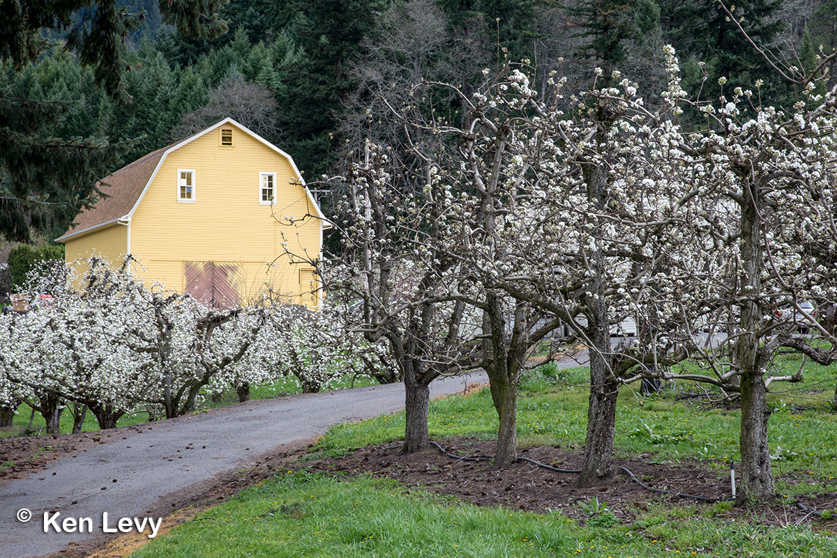 Barn, hood river fruit loop