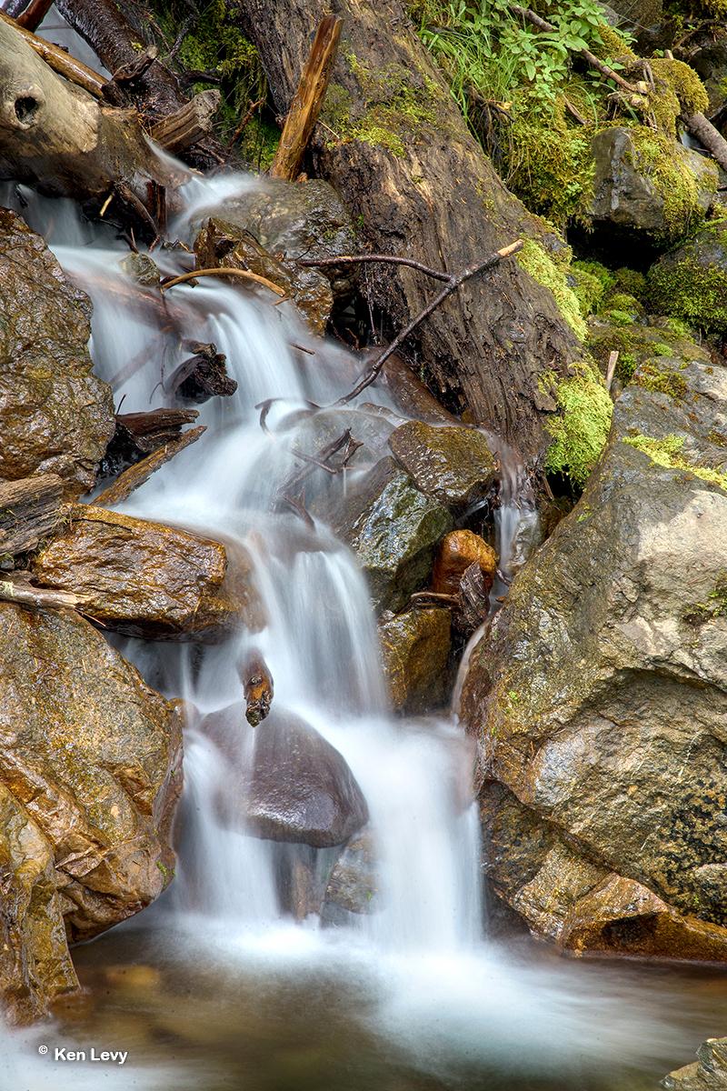 Falls, No Fork Skokomish
