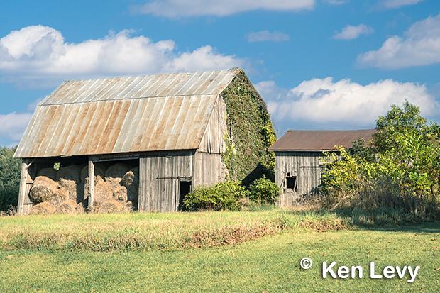 Barn, Ivy, Indiana