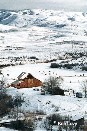 Ola Mountain Barn