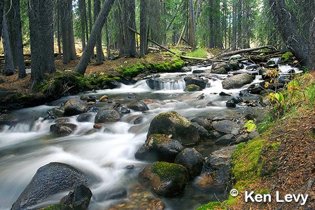 Photo Redfish Lake Creek Idaho