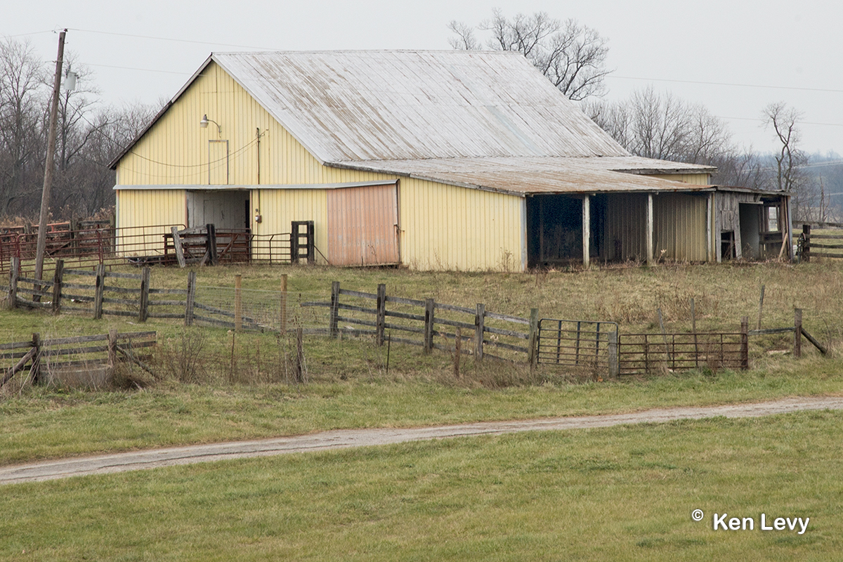 Yellow Barn Lexington