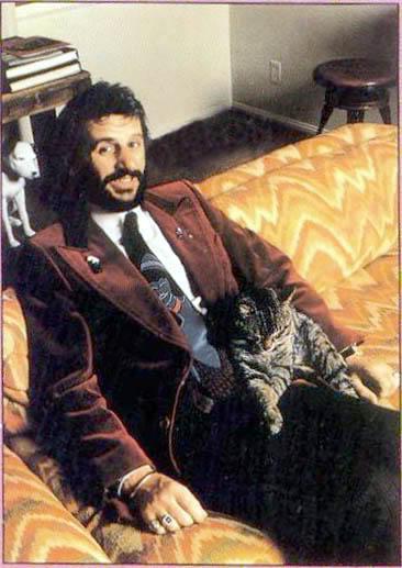 Ringo Willi Cat