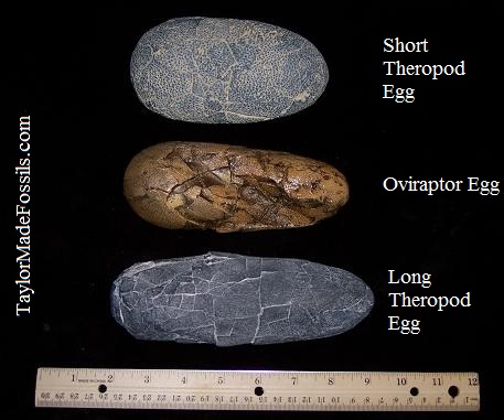 how to make a real dinosaur egg