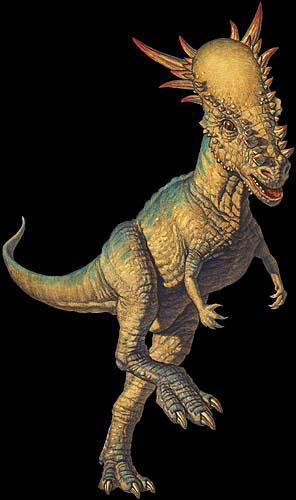 Stygimoloch spinifer fossils casts replicas ...