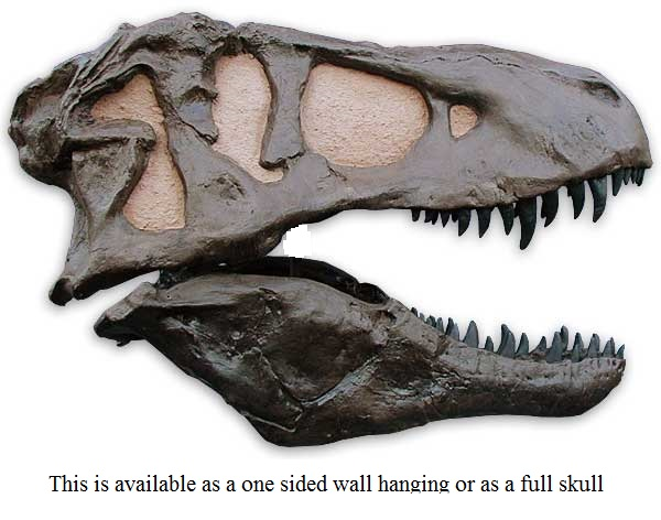 Get T Rex Skull Side View Gif