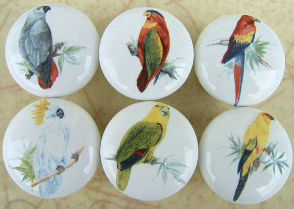 Ceramic Cabinet Knobs with Domestic bird Images Humming dove ...