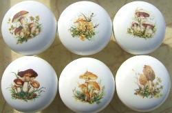 Ceramic Cabinet Knobs with Vegetables & Fruit