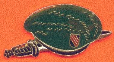 Green-Beret-Logo-Crest-Hat-Pin