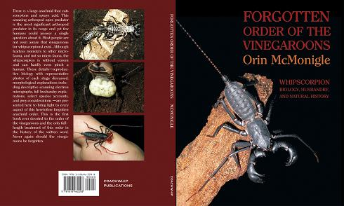 Elytra and Antenna: Insect & Arthropod Publications