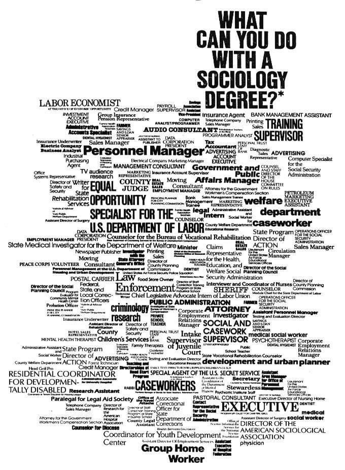 Sociology what is an it major