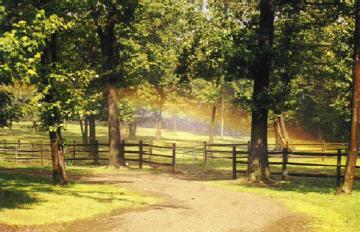 Country road rainbow