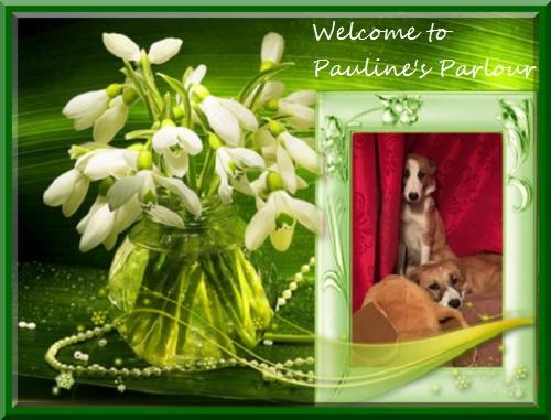 Pauline's Parlour