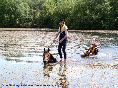 A group Duke of Edinburgh Award students swimming with horses in the Applemore Lake, New Forest