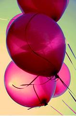 Happy Birthday, Rhonda!! Bir1