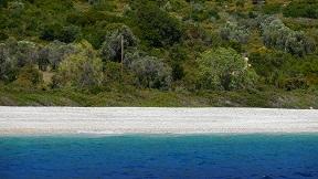 Alonissos Agios Dimitrios beach